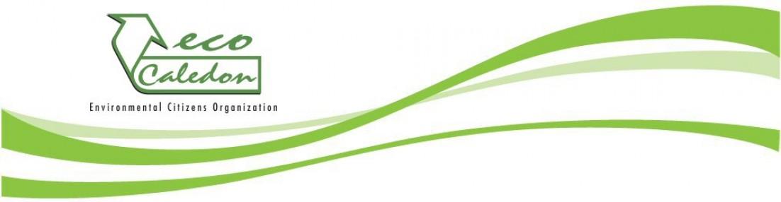 large ecoCaledon logo