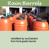 Rain barrels 600x600 v9 lgr border white lucida handwriting green bg one line of text
